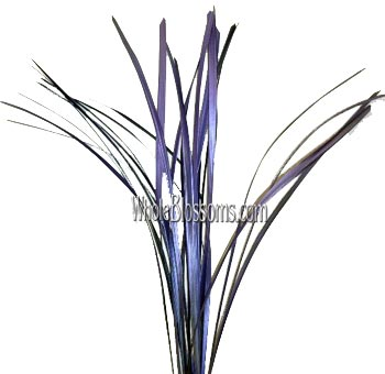 Lily Grass Metallic Blue Purple Flower Filler