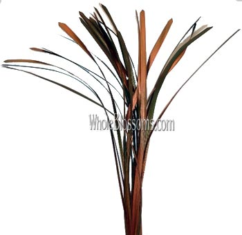 Lily Grass Metallic Orange Flower Filler