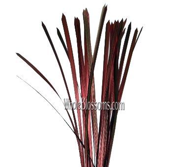 Lily Grass Metallic Red Flower Filler