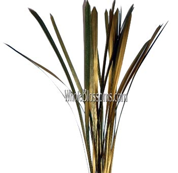 Lily Grass Metallic Gold Yellow Flower Filler