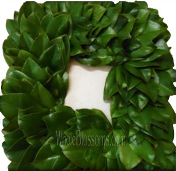 Magnolia Fresh Cut Green Squared Wreaths