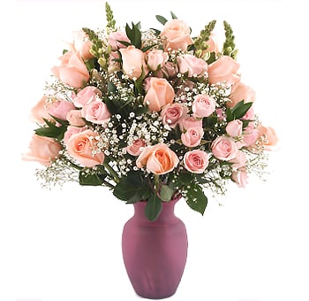 Fresh light pink blush flowers for sale amazing love flowers mightylinksfo Gallery