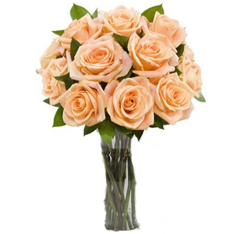 Long Stem Peach Roses
