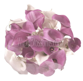 White Pink with Purple Cast Bridesmaid Calla Lily Bouquets