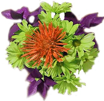 Purple Spider Dance Halloween Bouquet