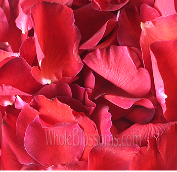 Fragrant Red Rose Petals