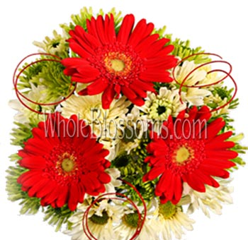 Red Gerbera Daisy Centerpiece