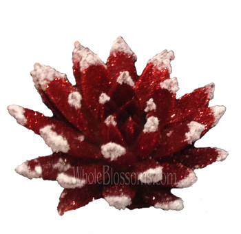 Red Glitter with Snow Succulent Flower