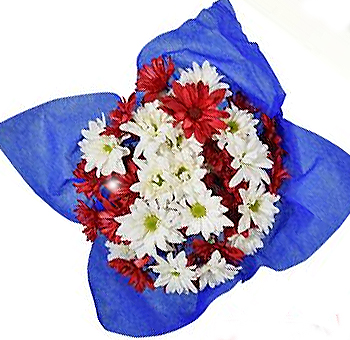 Red Mix Memorial Day Pom Pom Flowers
