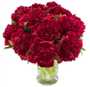 Red Peony Flower Arrangement