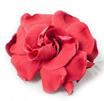 Red Preserved Gardenia Flowers