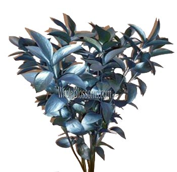 Ruscus Metallic Blue Flower Filler