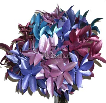 Ruscus Metallic Assorted Flower Filler