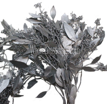 Silver Seeded Eucalyptus Flower Filler