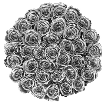 Silver Rose Collection