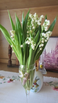 Lily Of The Valley Flower 10 Stems