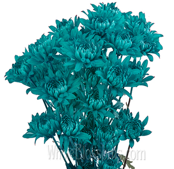 Cushion Pom Tinted Turquoise Blue Flowers