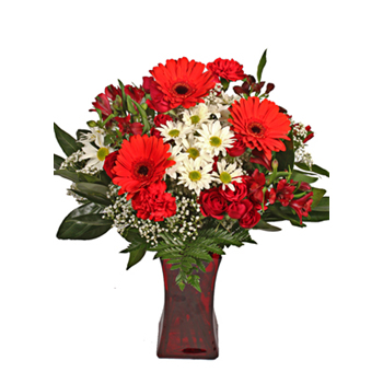 True Love Valentineu0027s Flowers