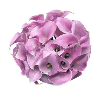 Pink Purple Cast Calla Lily Bridesmaid Bouquets