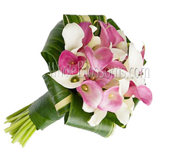 White & Pink with Purple Cast Nosegay Mini Calla Bridal Bouquet