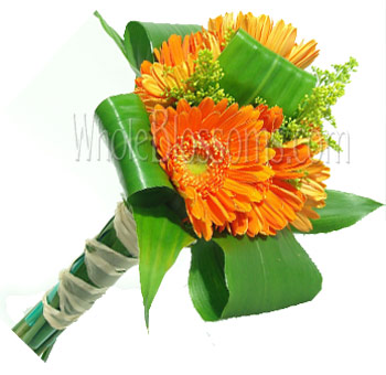 Orange Posy Gerbera Bridesmaids Bouquets
