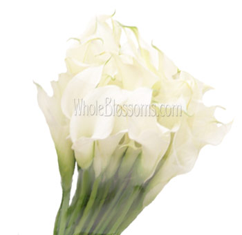 White Mini Calla Lilies Bridesmaid Bouquets