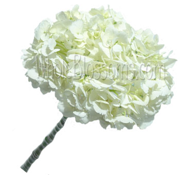 White Hydrangea Round Bridal Bouquet