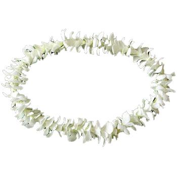 Fresh flower leis fresh hawaiian leis wholesale hawaiian leis white lei single bom mightylinksfo Images