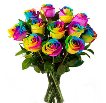 Novelty Wholesale Roses