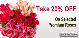 Premium Roses by Color