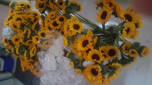 WholeBlossoms Testimonials Photos from Deborah Dunn