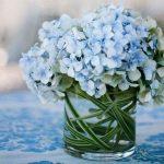 Hydrangeas Flowers for Sale