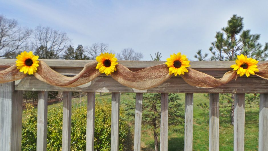 Buy Bulk Sunflowers