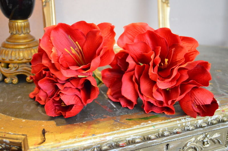 Amaryllis Flowers for Wedding