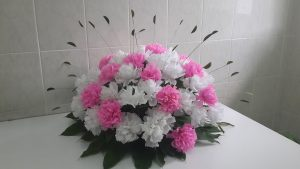 Fresh Wholesale Carnations