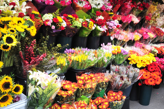 fresh cut flowers in wholesale