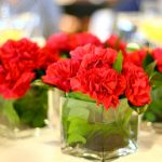 Fresh Wholesale Carnations