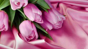 Wholesale wedding flowers