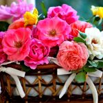 Wholesale fresh flowers