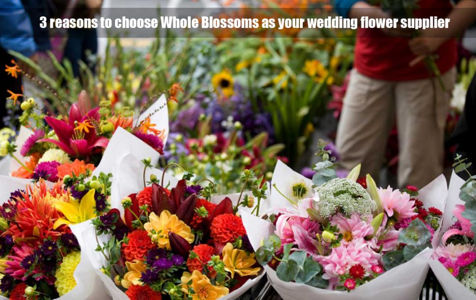 whole blossoms - Wholesale Flowers
