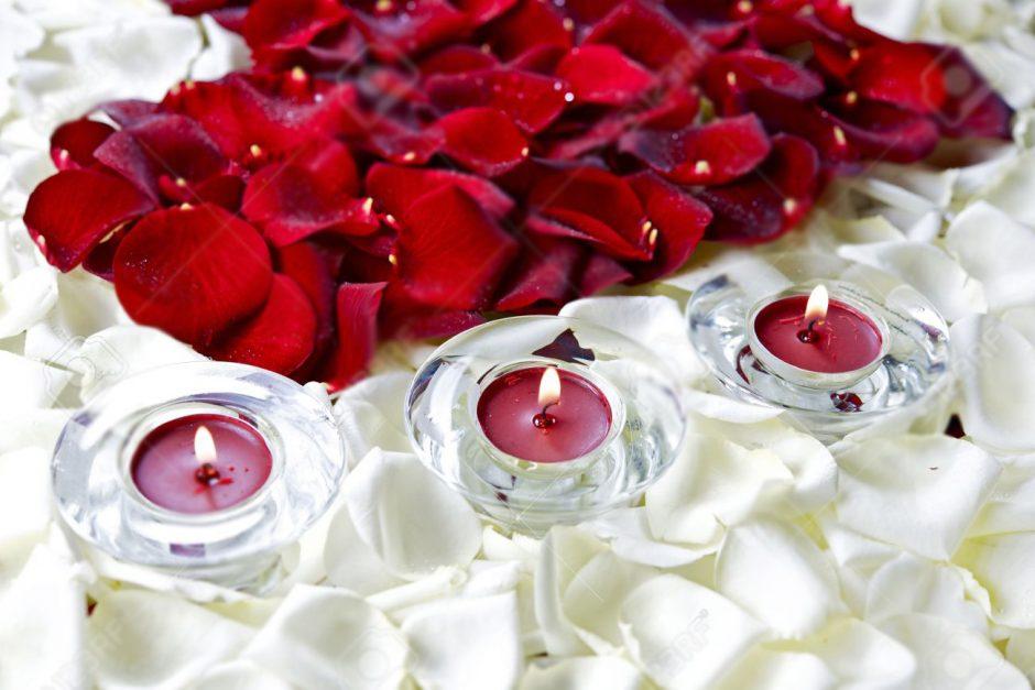 Bulk Rose Petals