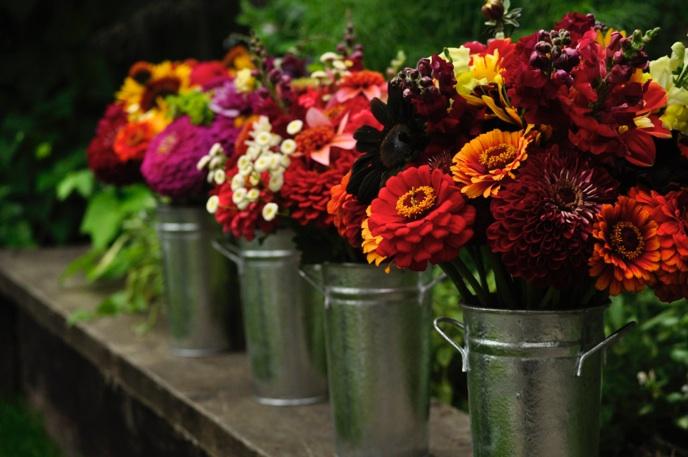 Buy Fresh Cut Flowers in Wholesale