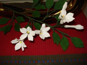 stephanotis flowers for sale