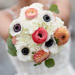 Anemone Flowers Wholesale