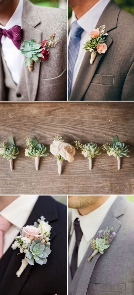 Succulent used in boutonniere